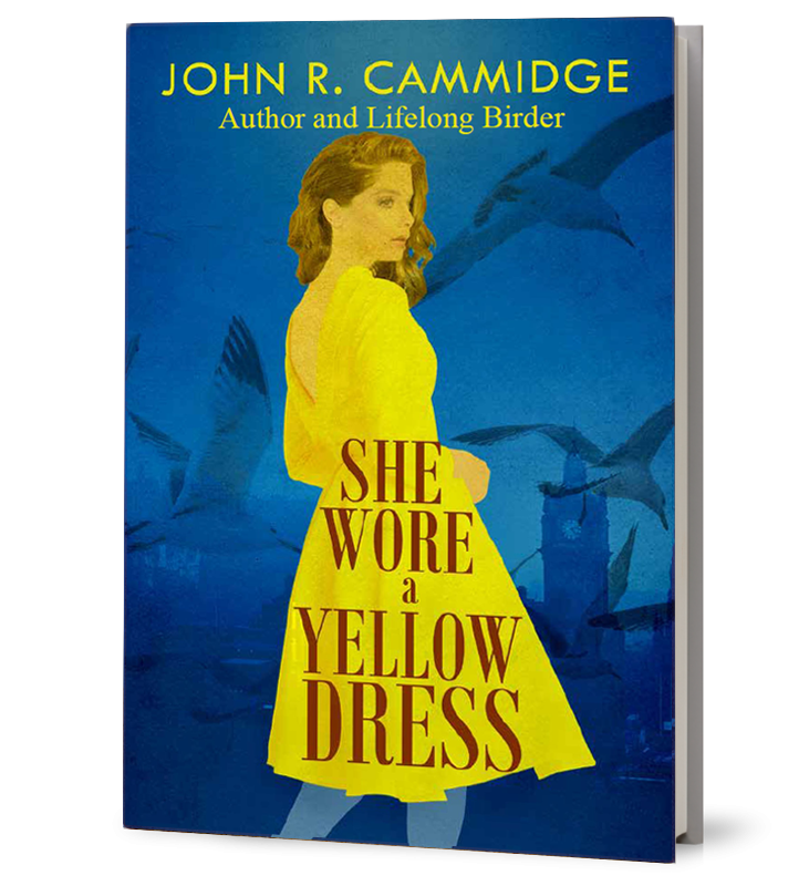 She Wore A Yellow Dress